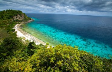 Apo Island day trip from Dumaguete, Philippines