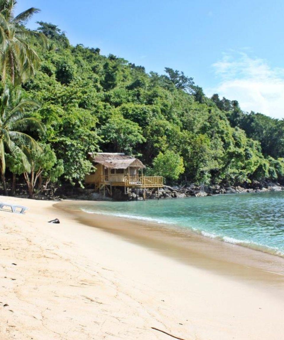 Island Resort: Blue Cove Tropical Island Resort