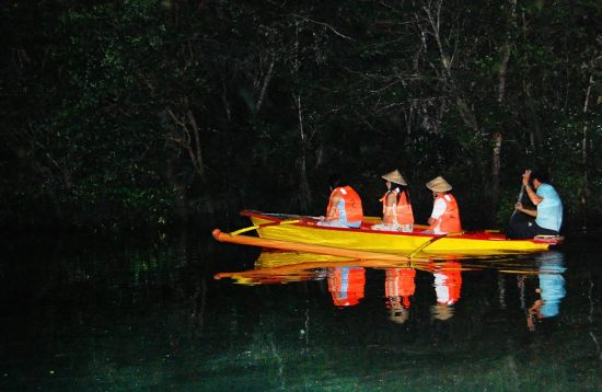 Tour package Firefly watching Puerto Princesa