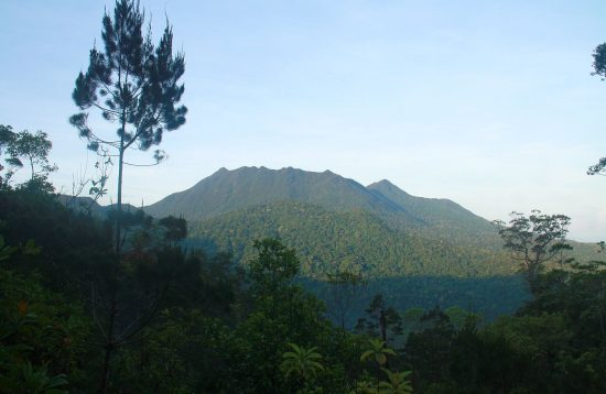 Mountain and jungle landscape in Palawan