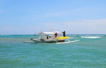 Cashew Grove Beach Resort Hotel - room photo 11013706